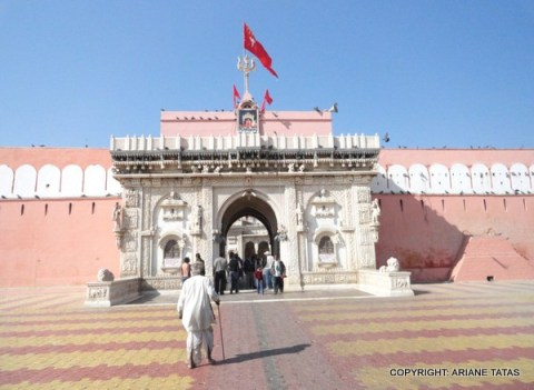 The temple also known as the Rat Temple of Rajasthan