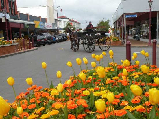 Tidy town Feilding, NZ