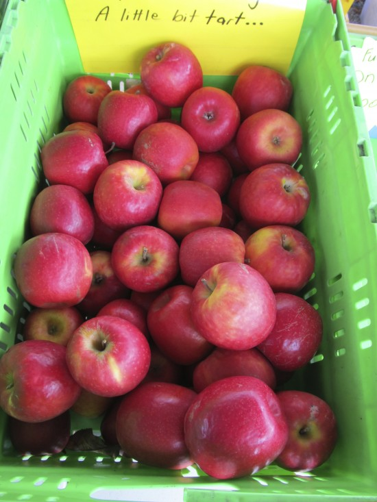 NZ apples, Feilding produce market