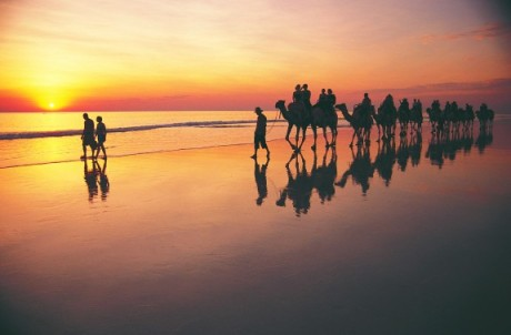 Camel ride at sunset on Cable Beach in Broome