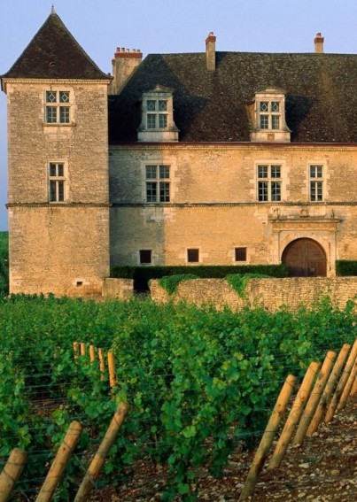 Could this Burgundy chateau and vineyard become a thing of the past?