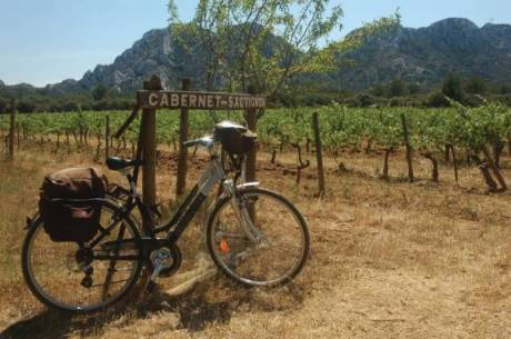 Cycling through Provence