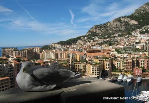 A bird's eye view of tiny sovereign city-state Monaco