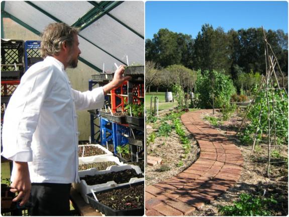 George tends his indoor plants, and the outdoor vege garden at Robert's Restaurant