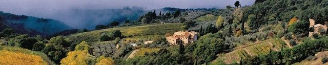 Castellina view
