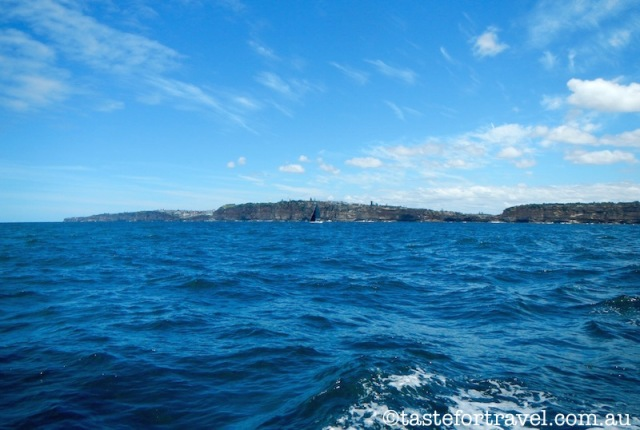 Sailing Sydney Harbour on Australia I. 5