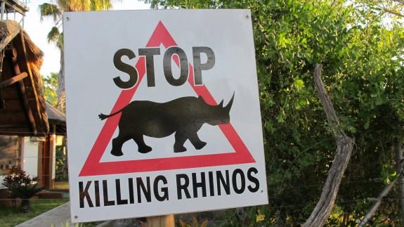 Stop Killing Rhinos